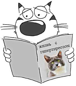 кот читает о гипертиреозе